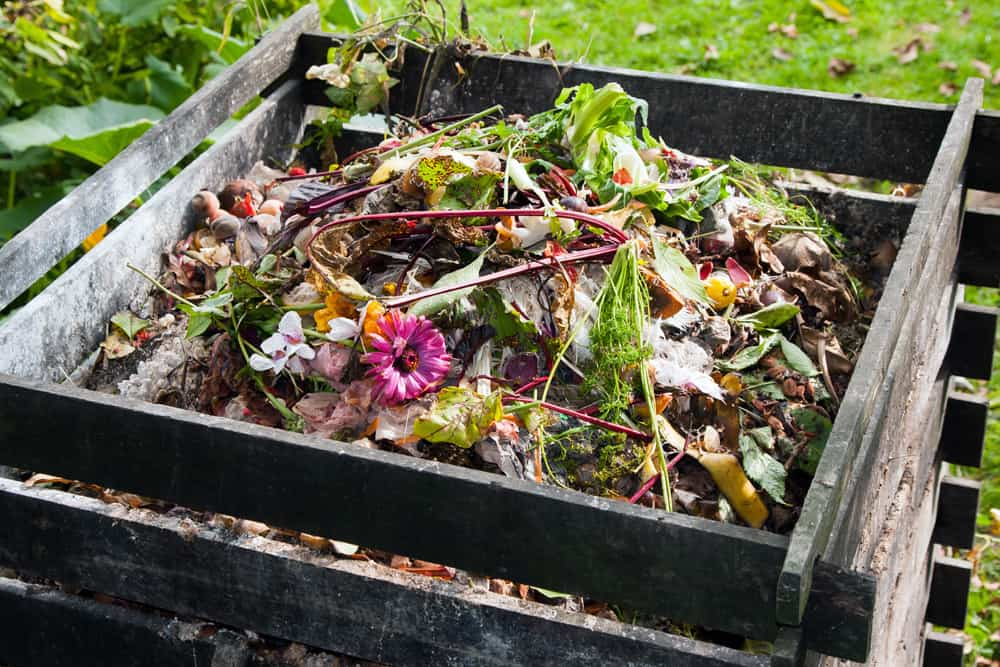 Wood slat compost bin near garden with vegetable and flower scraps