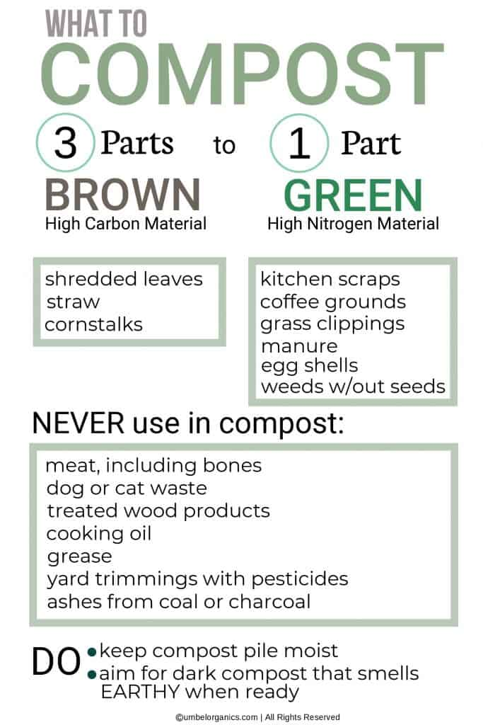 Infographic of the ratio of food and plant material that can be composted