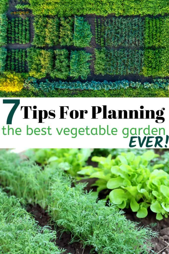Vegetable Gardens With text 7 Tips For Planning Your Vegetable Garden