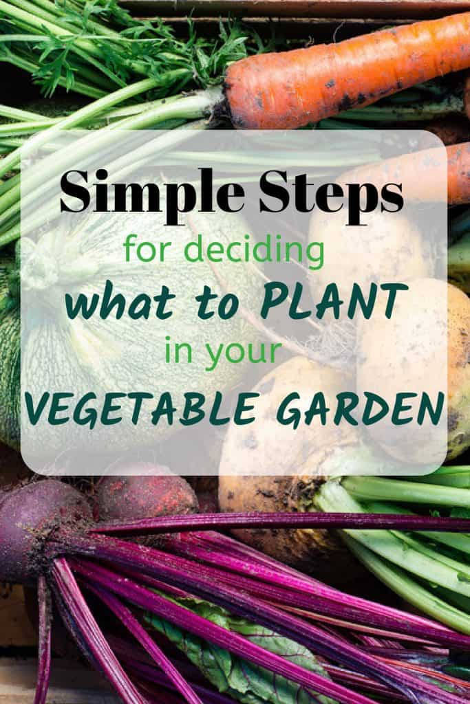 Medley of Garden Vegetables And Simple Steps For Deciding What To Plant In Your Vegetable Garden Text