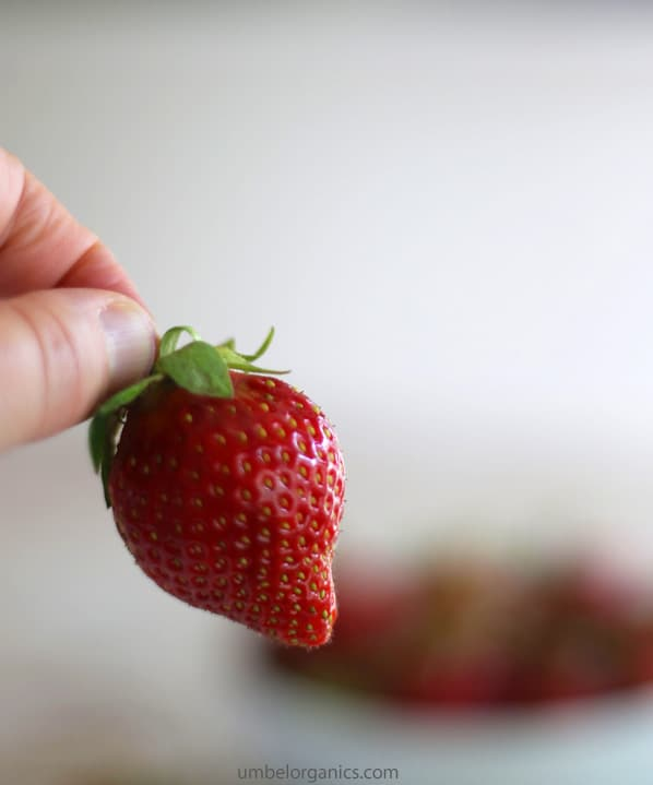 Up close picture of strawberry