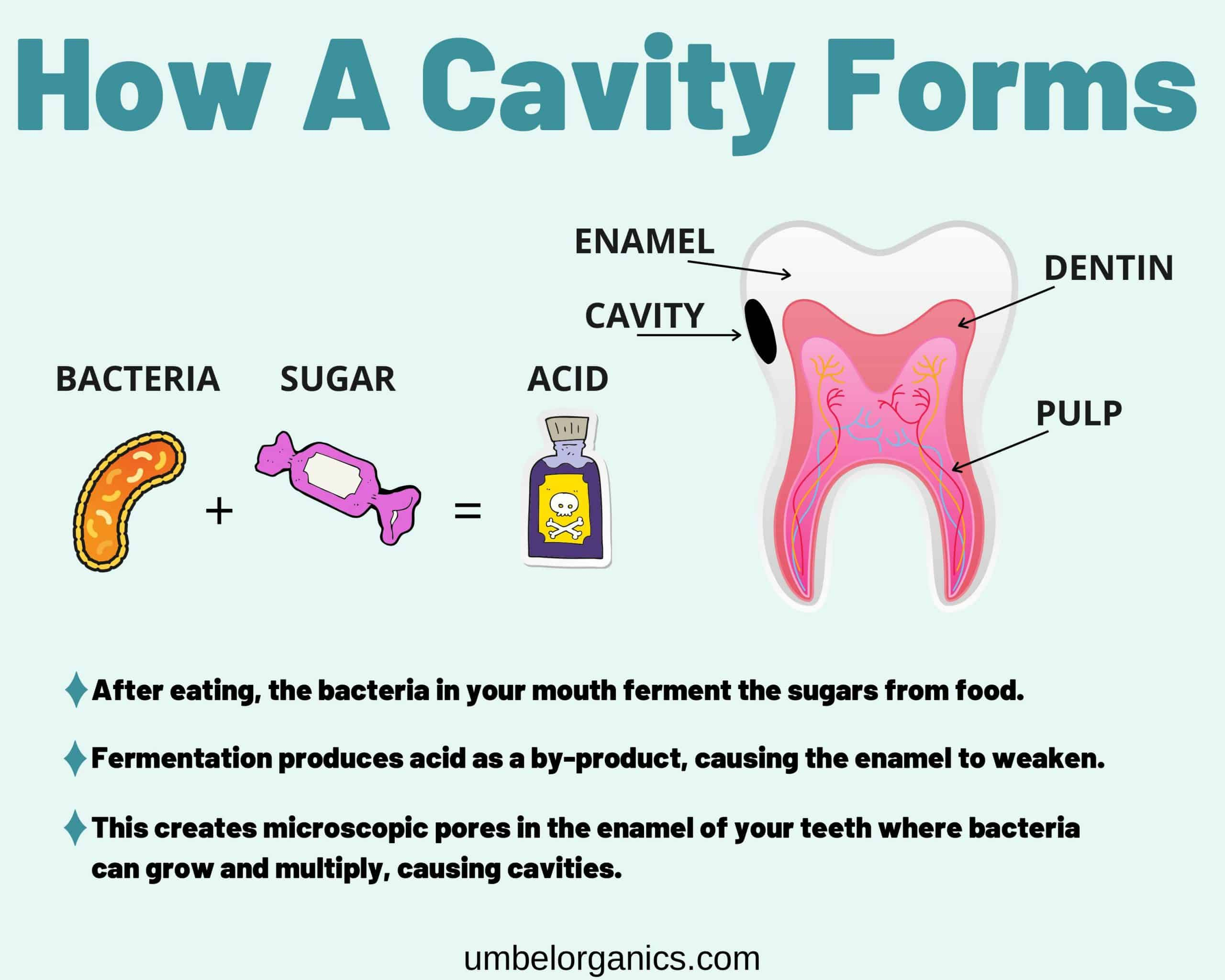 How a cavity forms infographic