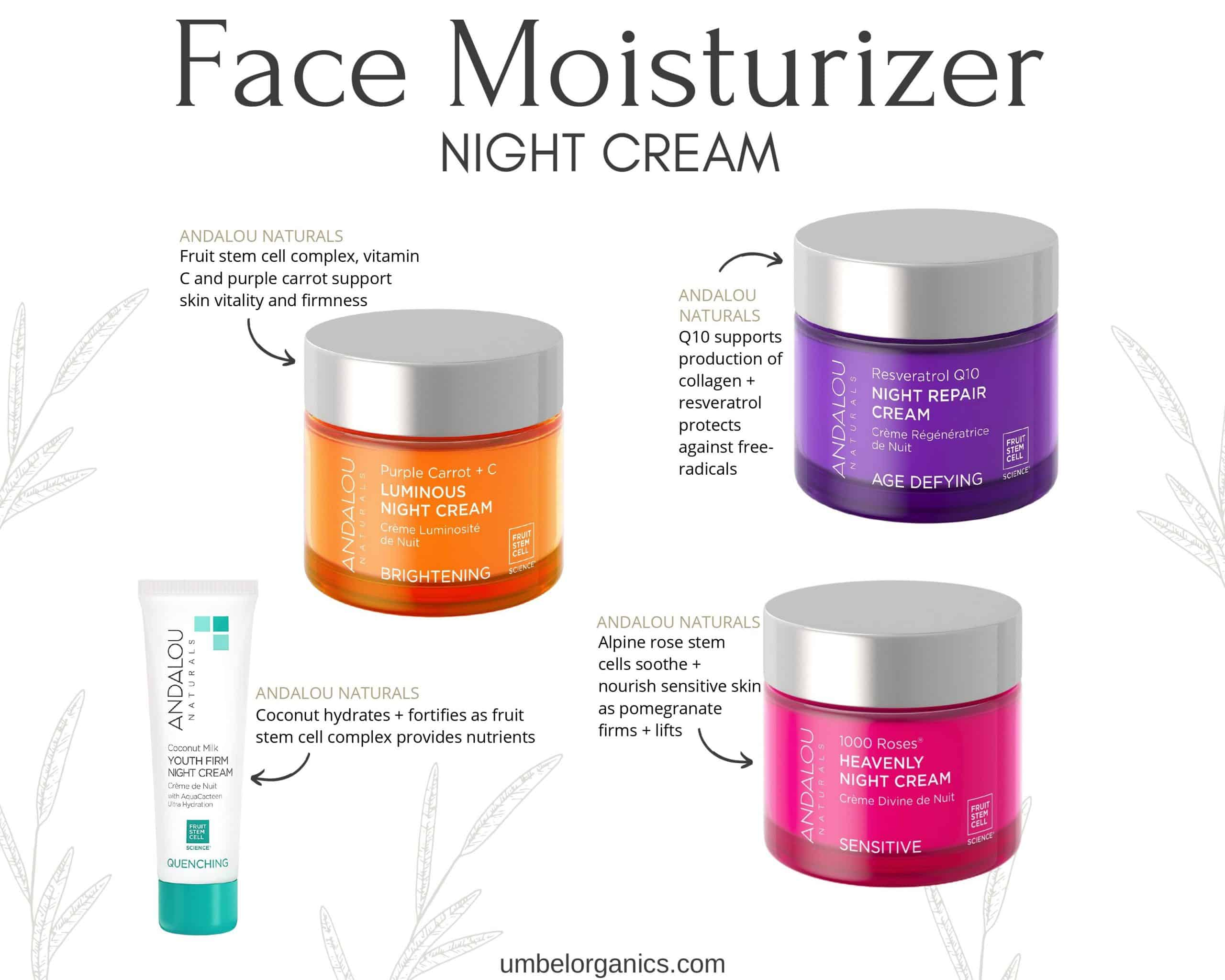 4 Clean, Budget-friendly Night Cream Moisturizers