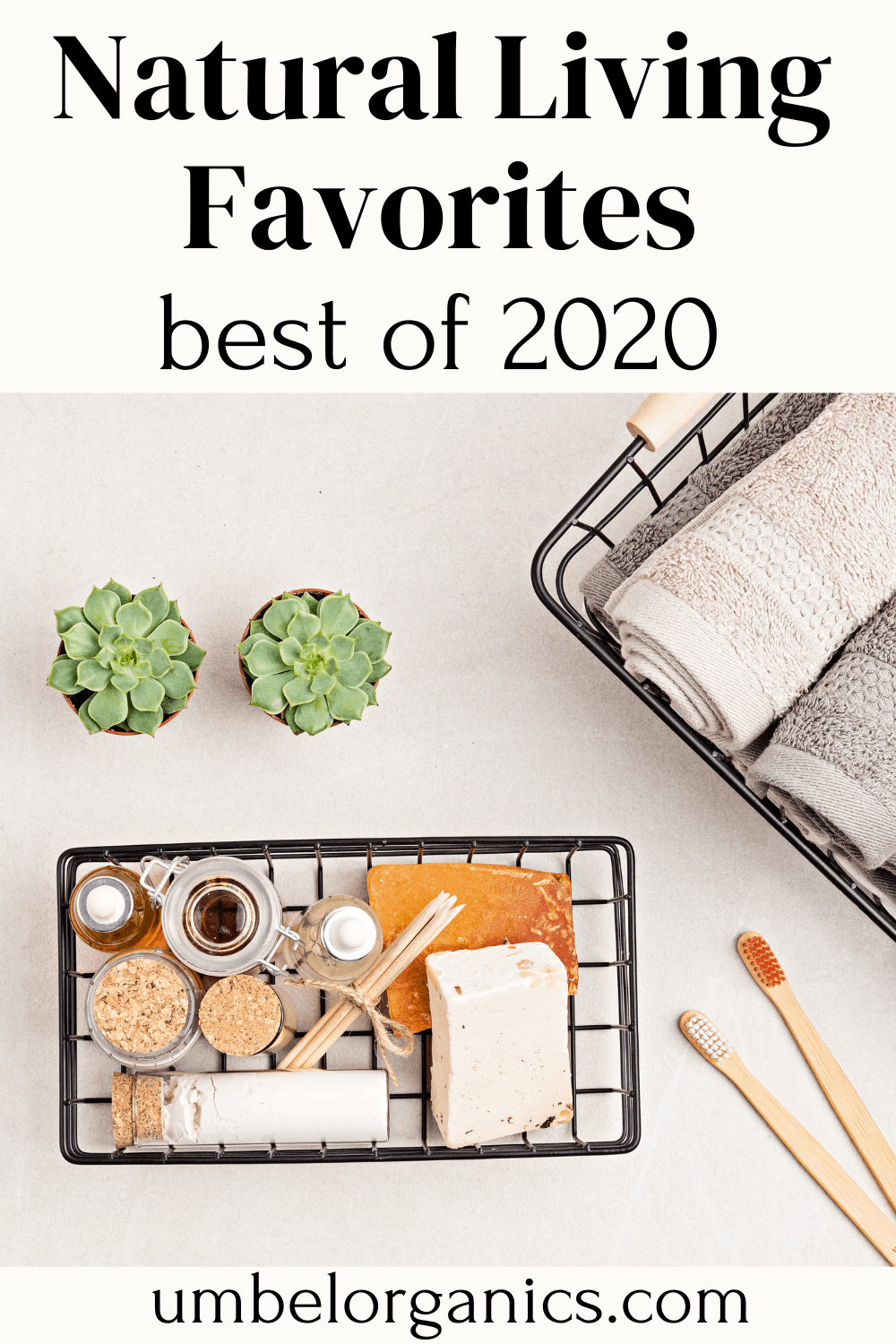 natural living products with succulent plants, bamboo toothbrushes and towels