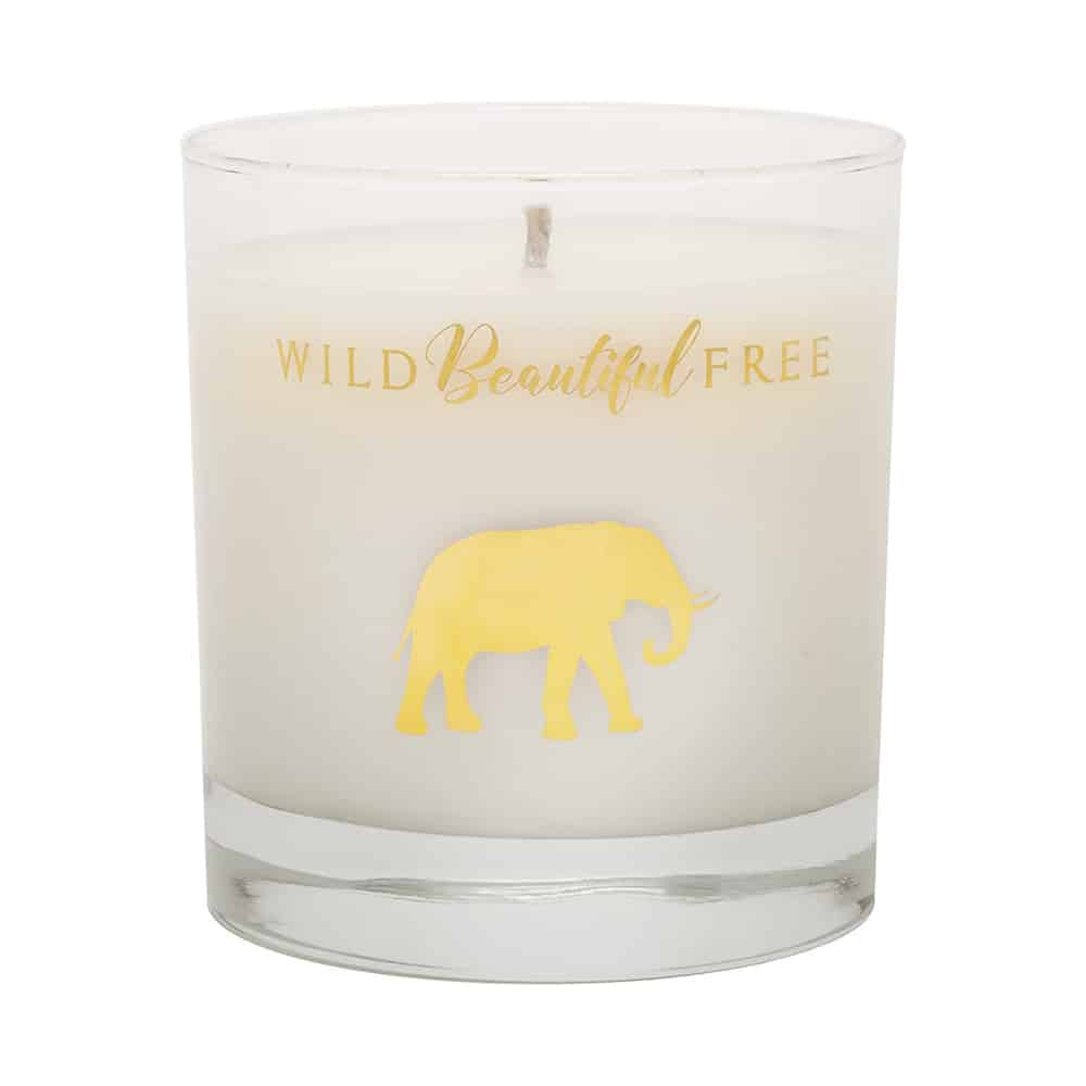 Wild Beautiful Free Candle