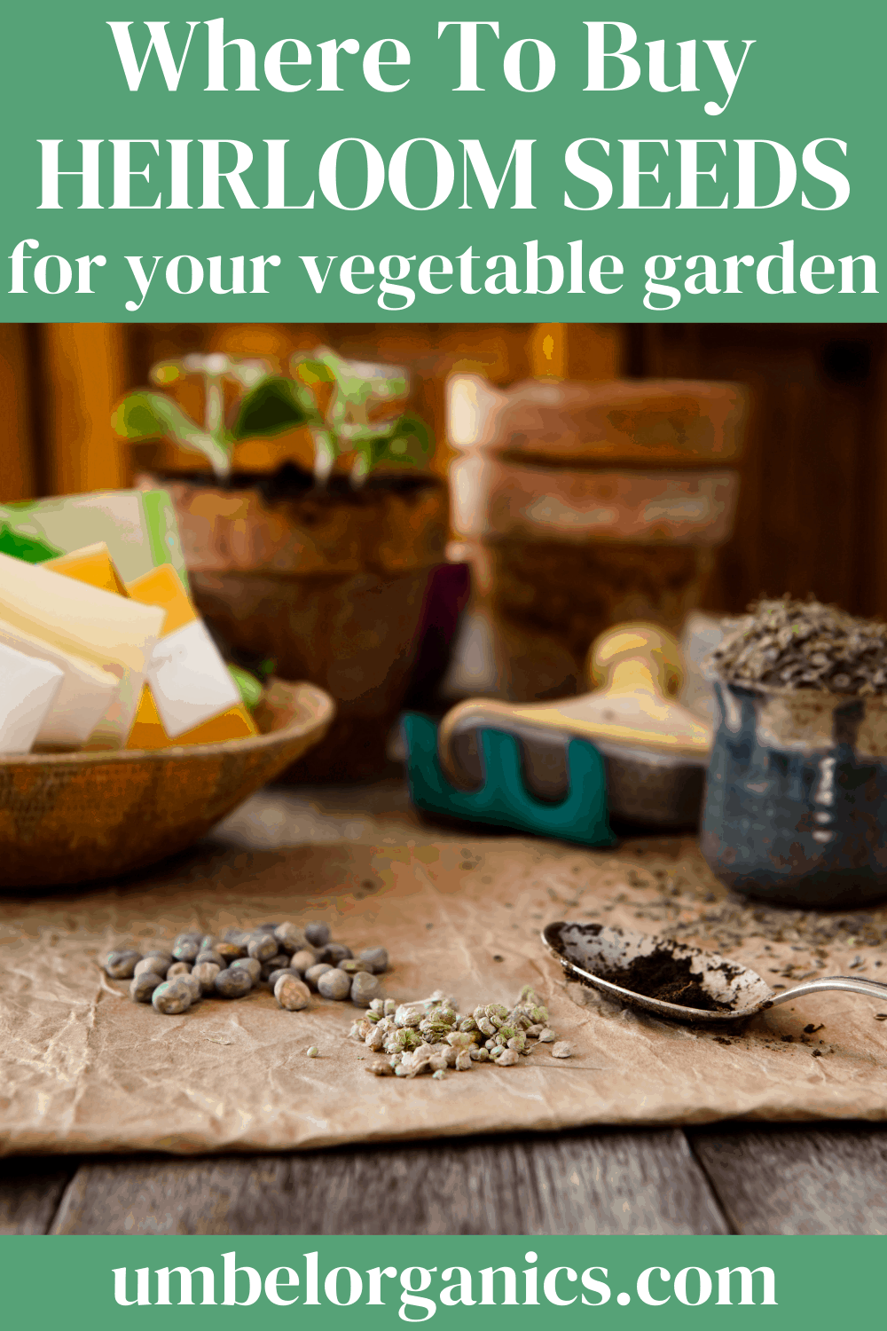 Vegetable seeds on brown paper bag with small green hoe and vegetable seed packets in wooden bowl