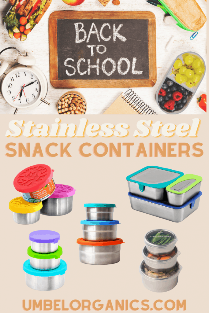 5 brands of stainless steel snack containers for kids with back to school sign